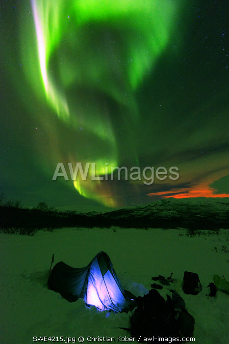 Arctic Circle, Lapland, Scandinavia, Sweden, Abisko National Park, aurora borealis northern lights on Kungsleden (Kings Trail)