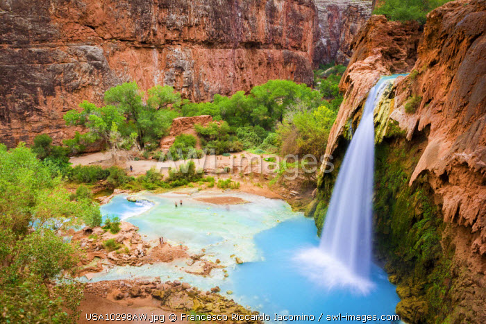 awl-images.com - USA / Havasu Falls, Havasupai Indian Reservation, Grand Canyon, Arizona, USA