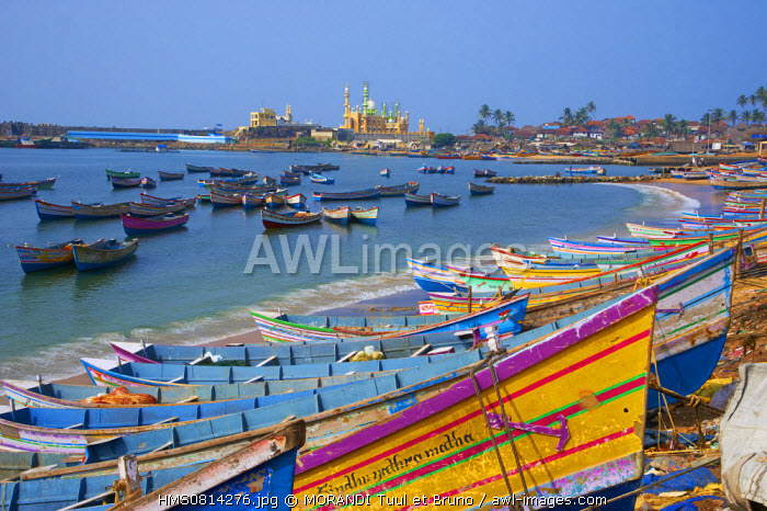 India, Kerala state, Vizhinjam, fishing harbour near Kovalam