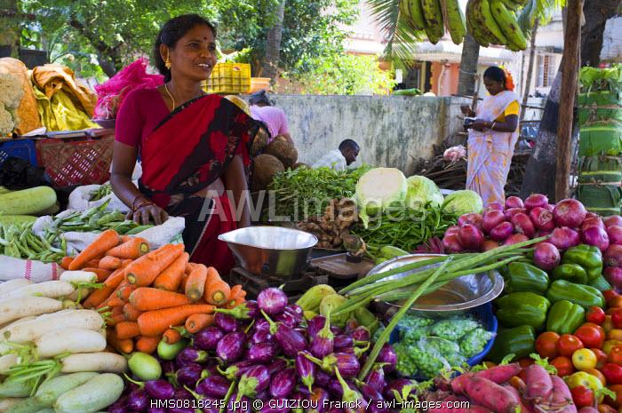 India, Tamil Nadu State, Mahabalipuram, vegetables market