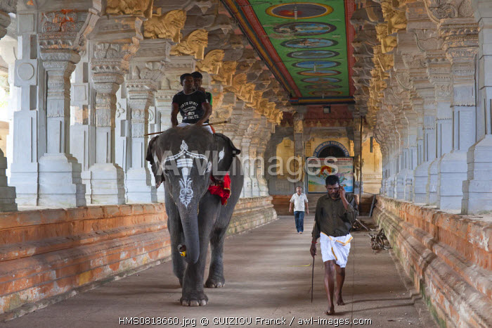 India, Tamil Nadu state, Rameswaram, one of the holy cities of India and important pilgrimage site for both Shaivites and Vaishnavites, the Ramanathaswami temple famous for its four corridors lined with carved columns
