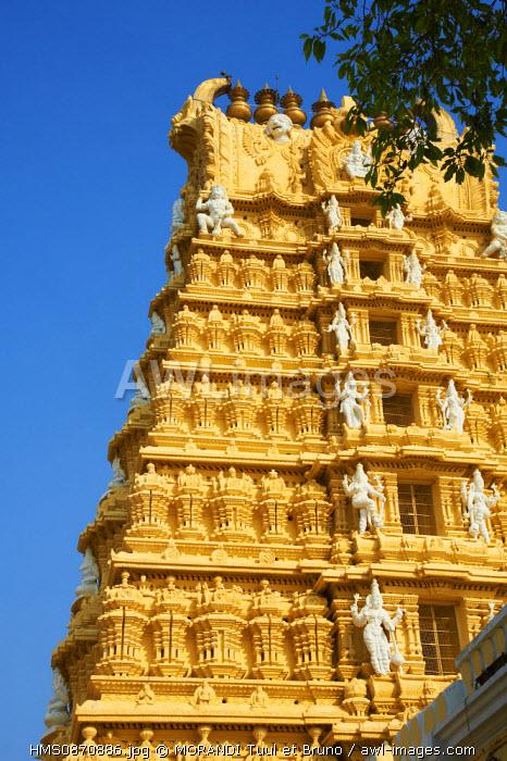India, Karnataka, Mysore, Chamundi hill, Sri Chamundeswari temple, pilgrim