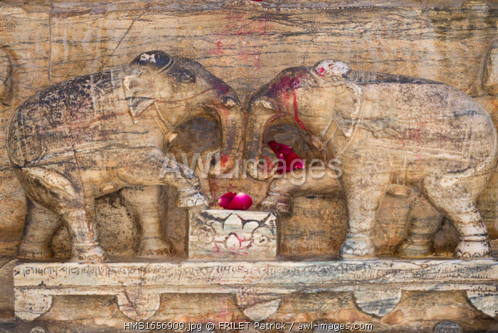 India, Rajasthan state, Udaipur, Marble Elephants at the Jagdish Temple, a hindu temple dedicated to Lord Vishnu