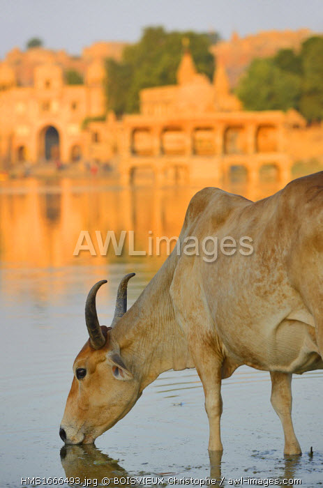 India, Rajasthan, Jaisalmer, Gadi Sagar tank
