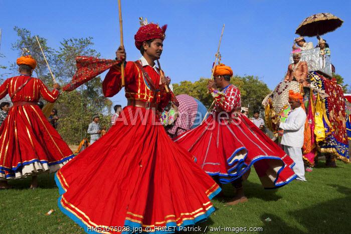India, Rajasthan state, Jaipur, Elephant Festival