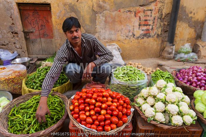 India, Rajasthan state, Shekhawati, Nawalgarh, market