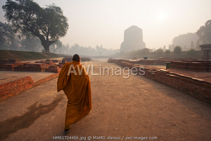 India, Uttar Pradesh state, Sarnath, the site where Lord Buddha gave first sermon to his disciples, listed as World Heritage by UNESCO, the archaeological site of Sarnath with the Dhamekh stupa