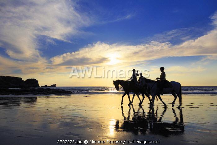 Costa Rica, Guanacaste, Nicoya Peninsula, Nosara, Playa Pelada