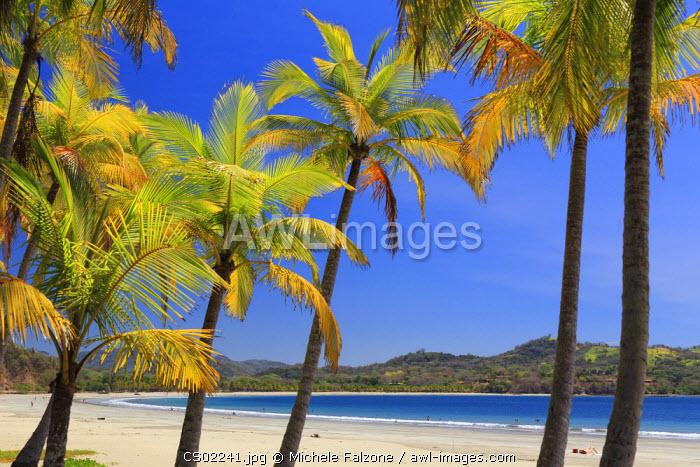 Costa Rica, Guanacaste, Nicoya Peninsula, Nosara, Playa Carillo