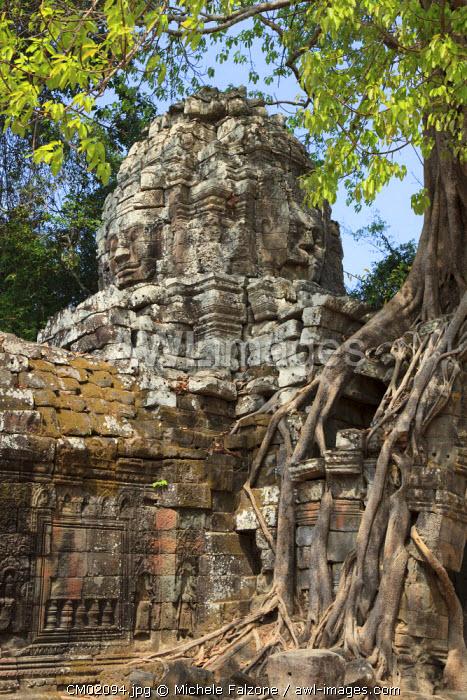 Cambodia, Temples of Angkor (UNESCO site), Ta Som Temple