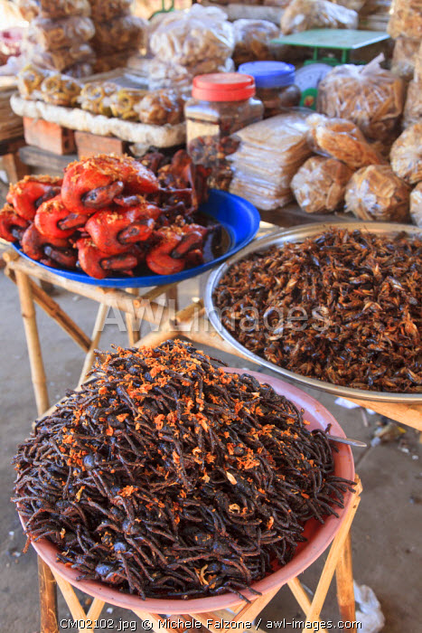 Cambodia, Skuon, Local Market, fried Insects for sales