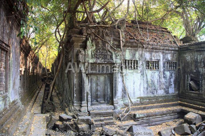 Cambodia, Temples of Angkor (UNESCO site), Beng Malea Temple