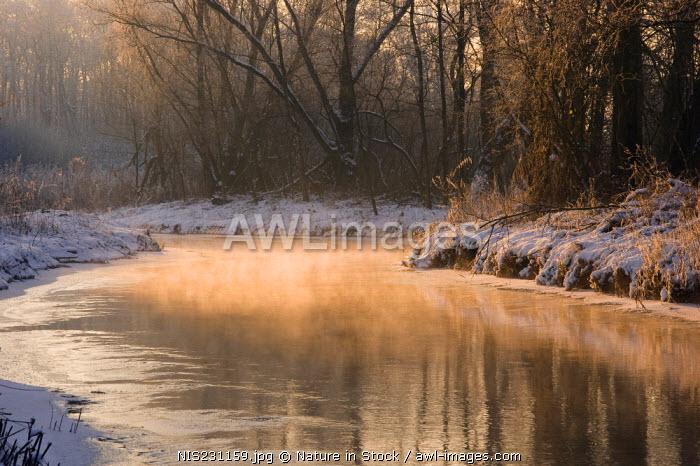 The river Kleine Dommel in the winter, Noord-Brabant, The Netherlands, The Netherlands