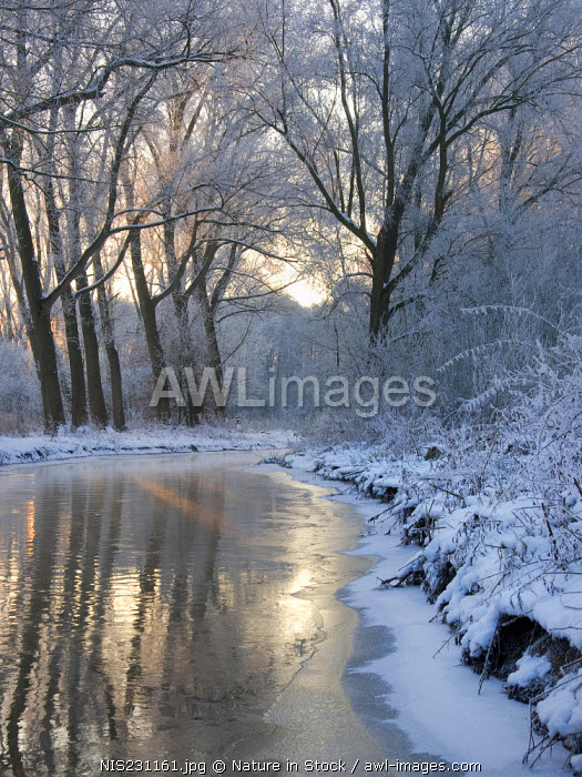 The river kleine dommel after an extreme cold night, Kleine Dommel, Noord-Brabant, The Netherlands, The Netherlands