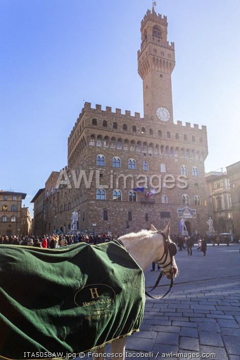 Italy, Italia. Tuscany, Toscana. Firenze district. Florence, Firenze. Piazza della Signoria. Palazzo Vecchio and Arnolfo Tower