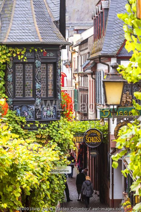 Street view, Rudesheim, Rhine valley, Hesse, Germany