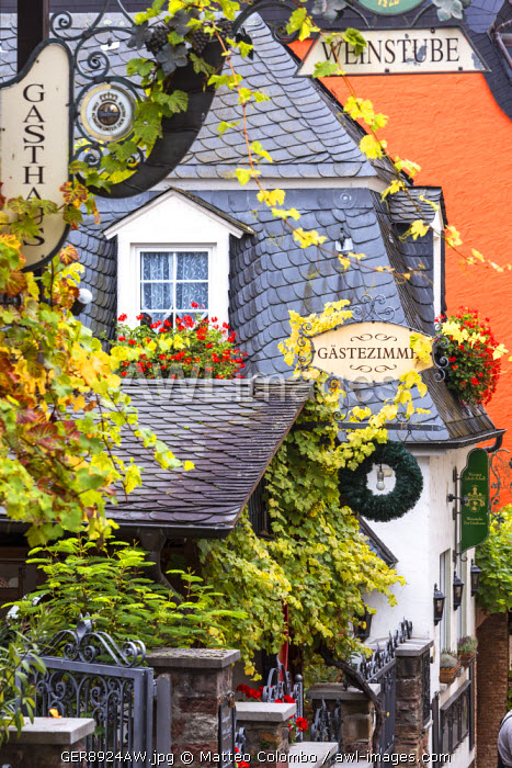 Street view, Rudesheim, Rhine valley, Hesse, Germany
