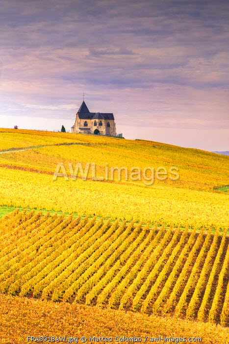 Chavot Courcourt, Champagne Ardenne, France