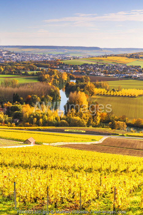 Hautvilliers, Marne valley, Champagne Ardenne, France