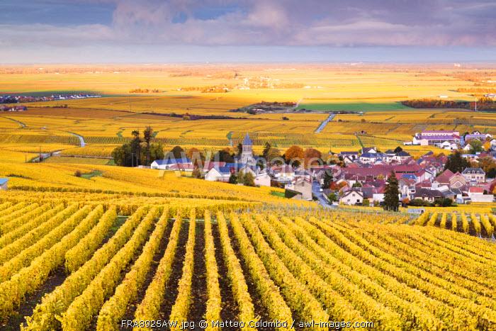 Oger, Champagne Ardenne, France