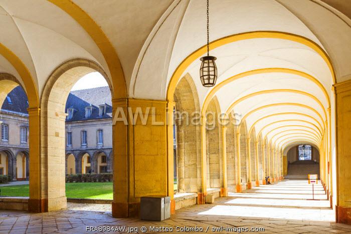 Cluny abbey, Saone et Loire, Burgundy, France