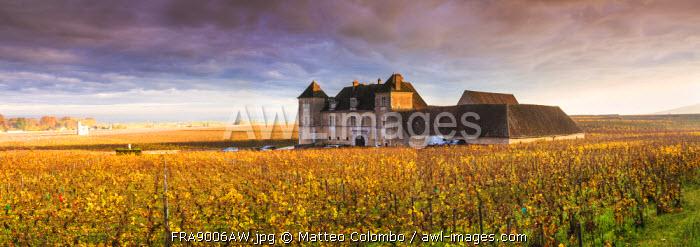 Vougeot castle and vineyards, Burgundy, France
