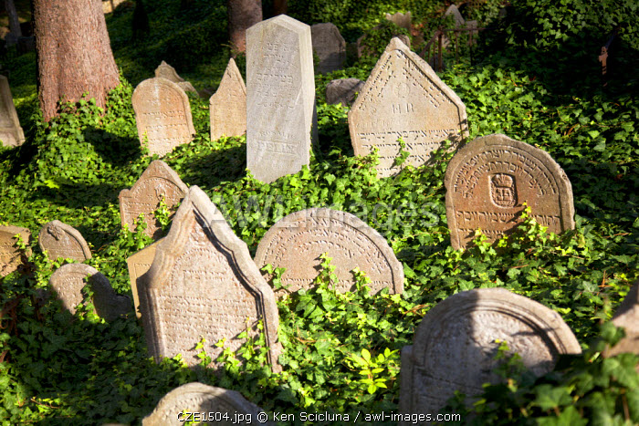 Czech Republic, Moravia, Trebic. Old tombstones at the Jewish cemetery. Unesco