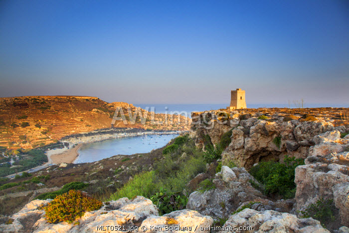 Europe, Maltese Islands, Malta. Dramatic Scenery of the northern cliffs with one of the towers built by Grand Master de Redin.
