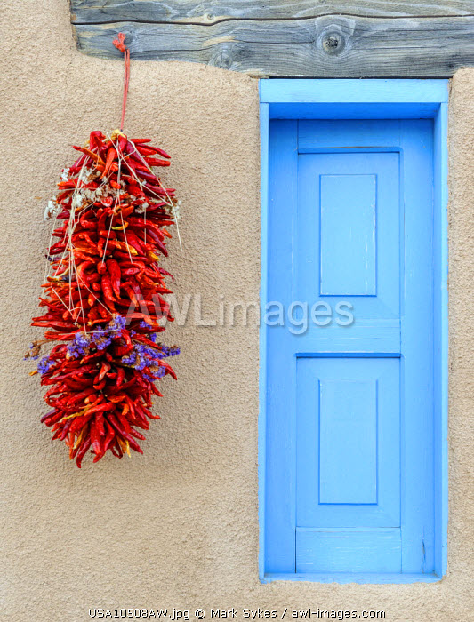 North America, United States of America, New Mexico, Taos, Drying Chili Peppers