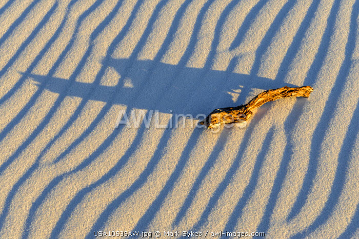 North America, United States of America, New Mexico, White Sands National Monument