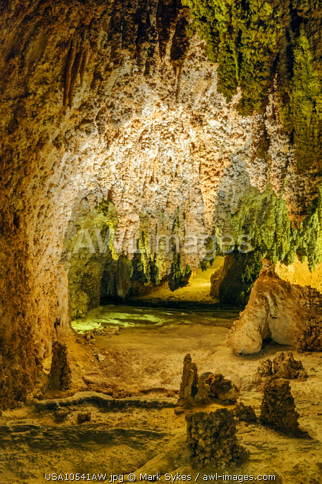 North America, United States of America, New Mexico, Carlsbad Caverns National Park