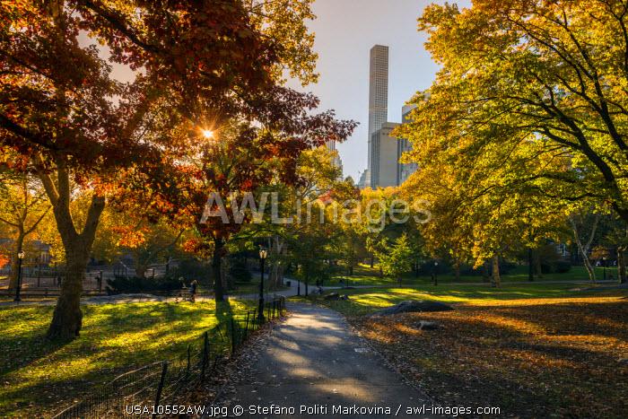 Fall foliage at Central Park, Manhattan, New York, USA
