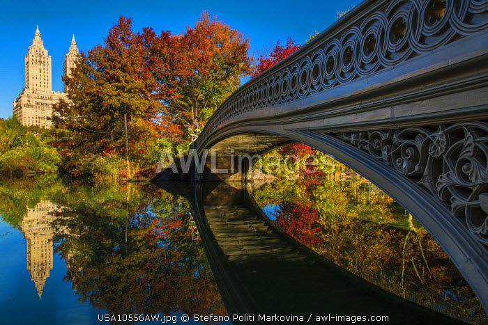 Bow Bridge reflected into the lake, Central Park, Manhattan, New York, USA