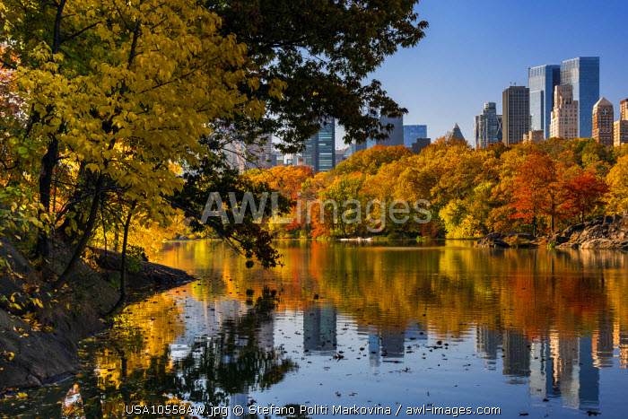 Fall foliage at Central Park, Manhattan, New York, USA