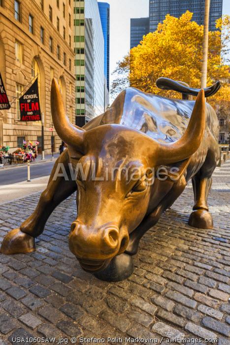 The Charging Bull bronze sculpure, Lower Manhattan, New York, USA