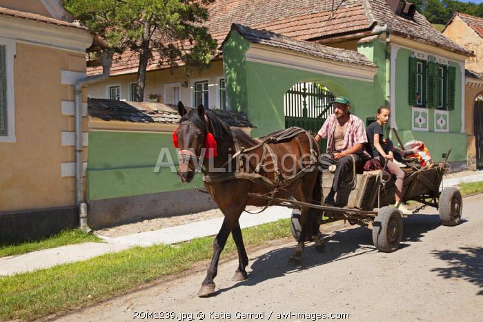 Romania, Transylvania, Malancrav. Horse and cart.