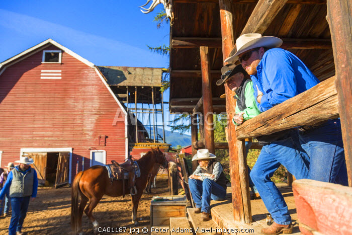 Cowboys relaxing on ranch, British Columbia, Canada