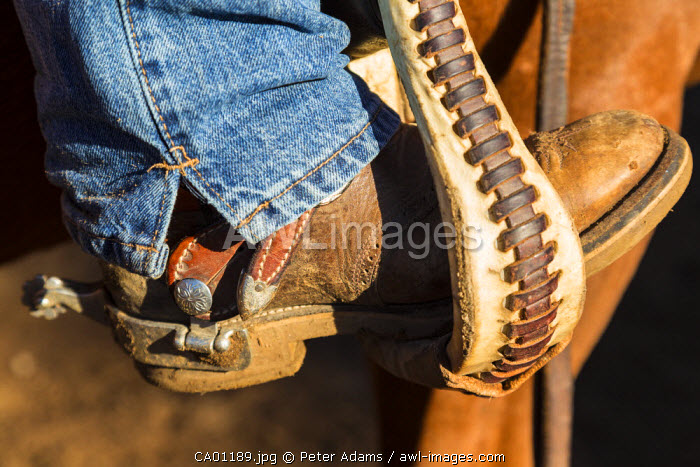 Close up of boot, jeans & spur, British Columbia, Canada