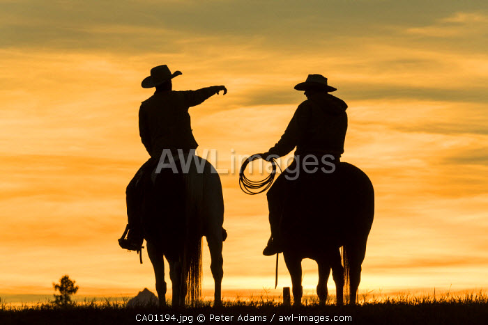 Cowboys & horses in silhouette at dawn on ranch, British Columbia, Canada