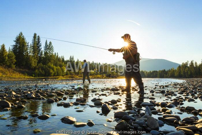 Fly fisherman casting & fishing, British Coumbia, B.C., Canada