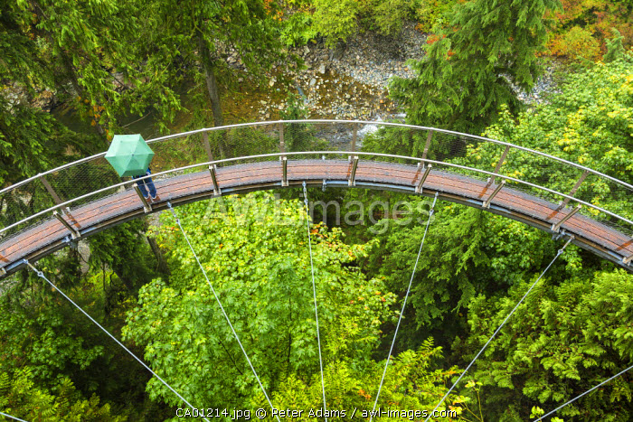 Tourists in Capilano Suspension Bridge and Park, Vancouver, British Columbia, Canada, North America