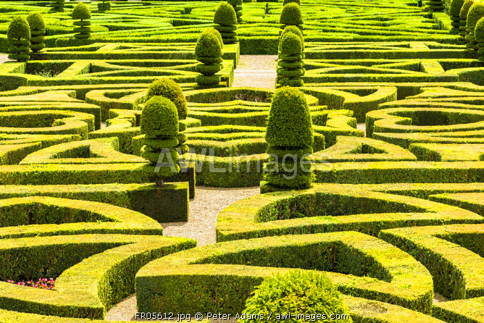 Formal gardens, Chateau of Villandry, Indre et Loire, Loire Valley, France
