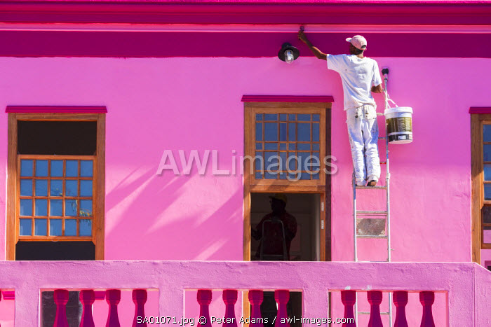 Men painting colourful house, Bo Kaap, Muslim Malay Quarter, Cape Town, Western Cape, South Africa
