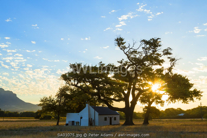 Farmhouse nr Franschoek, Winelands, Western Cape Province, South Africa
