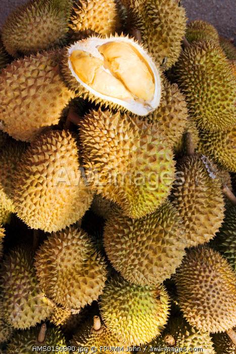 Malaysia, Kedar Pasar Payang market near Kuala Terengganu, Durian fruit