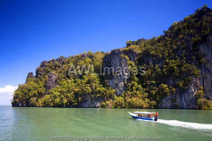 Malaysia, Kedah state, Andaman Sea, Langkawi island, Kilim Karst Geoforest Park, boat excursion