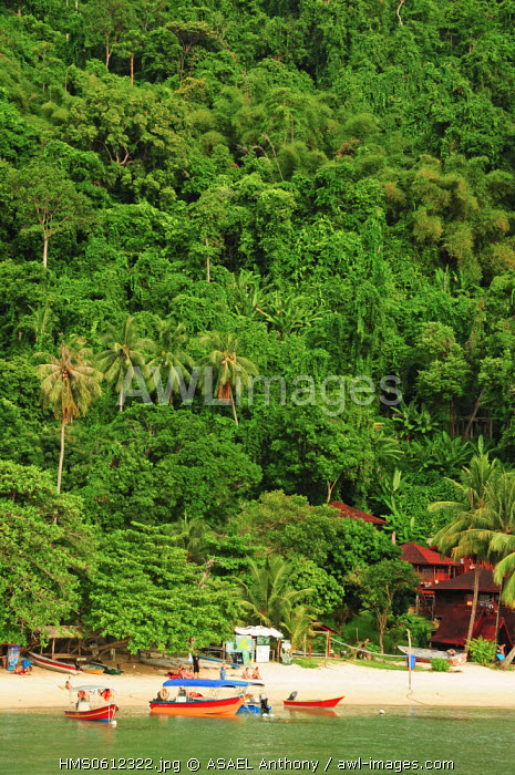 Malaysia, Terengganu State, Perhentian Islands, Perhentian Kecil, wooden hotel in the forest