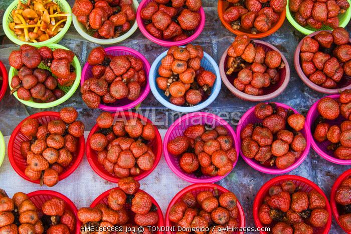 Malaysia, Malaysian Borneo, Sarawak State, Serian, Food market, Snake fruit, Salak (Salacca zalacca)
