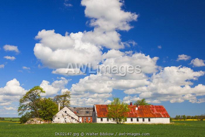 Denmark, Jutland, Odum, farm, springtime