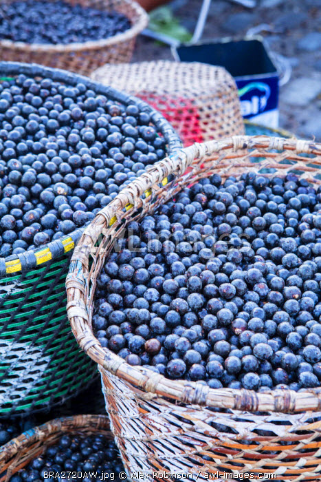 awl-images.com - Brazil / South America, Brazil, Para state, Belem, Acai berries on sale in the morning market